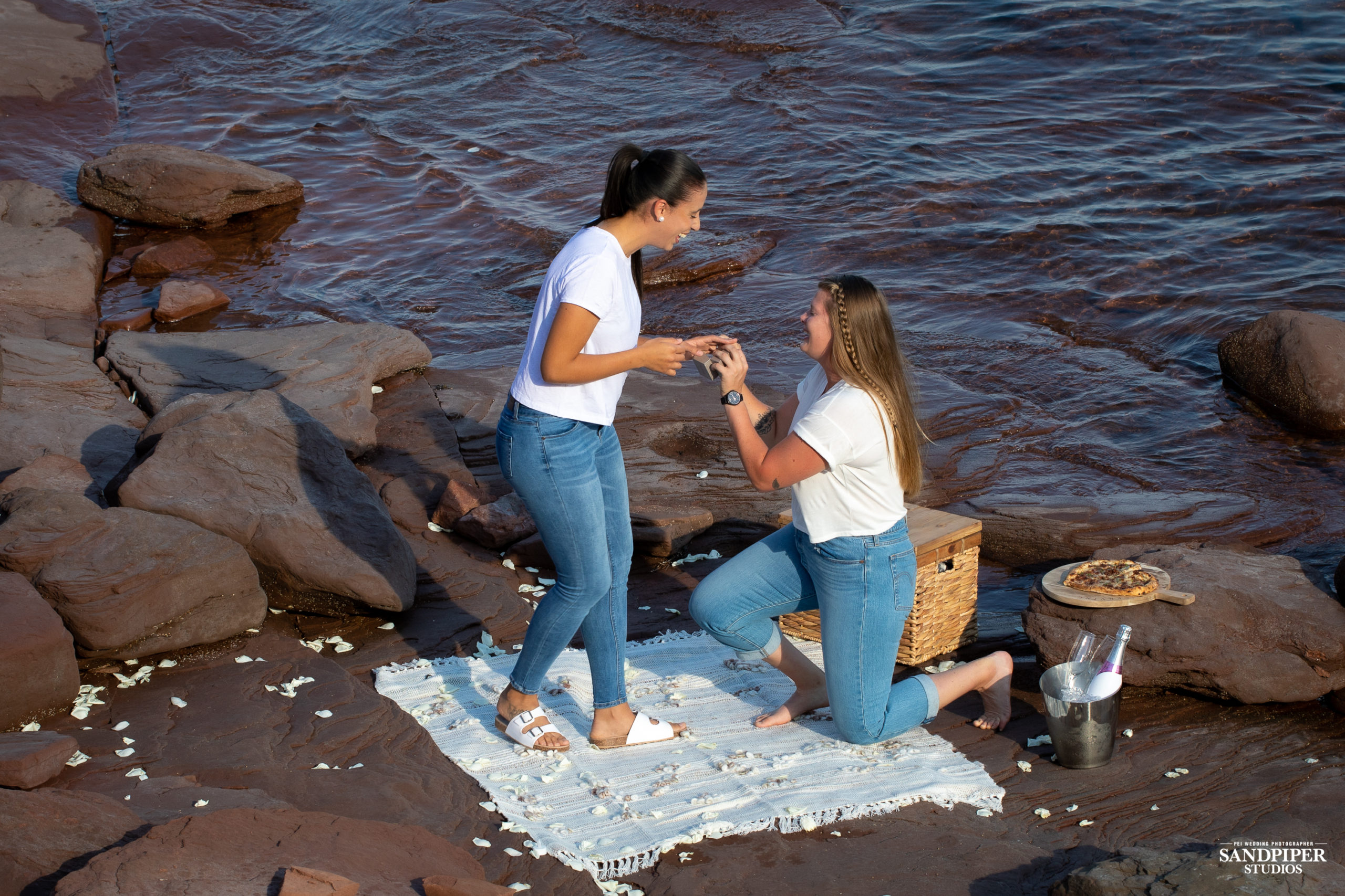 girl proposing to girlfriend pei photographer